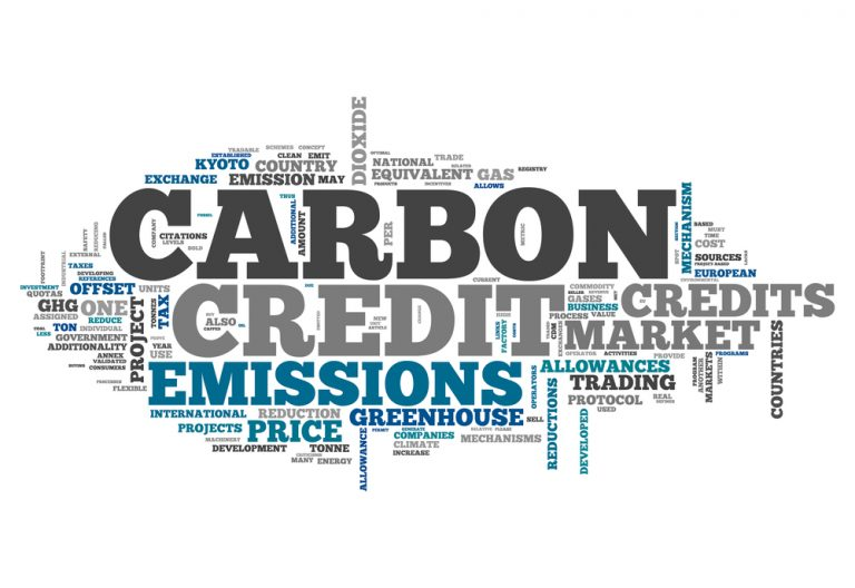 Carbon Credit Markets   National Indian Carbon Coalition